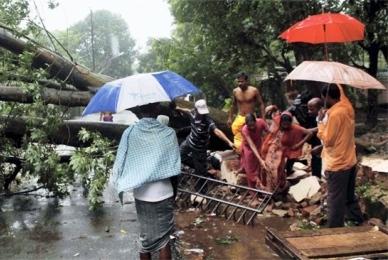Cyclone_Phailin_Bhubanewshwar_trees_fell_PTI_630