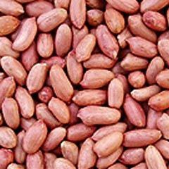 groundnut-seeds
