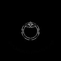 VSS MedicalCollege Logo