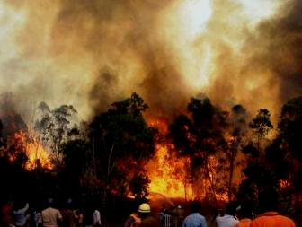 The forest fire in Tirumala (Photo: IANS)