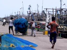Fishing Harbour, Paradip