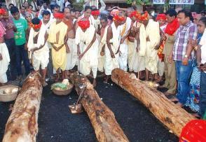 Ritual beginning of construction of chariots at Puri on Akshaya Tritiya