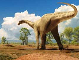 ( source : dinosaursabbatical.blogspot.com)