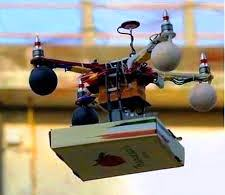 Flying Pizza ! (source : abplive.in)