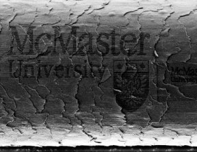 University Logo Carved Onto Human Hair with Focused Ion Beam ( gadgets.boingboing.net)
