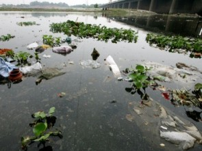 Polluted Yamuna ( pic courtesy- lifescienceworld.in)