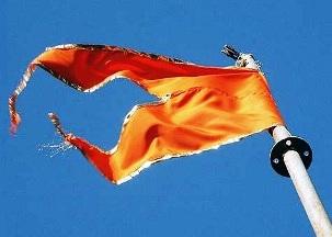 RSS SAFFRON FLAG