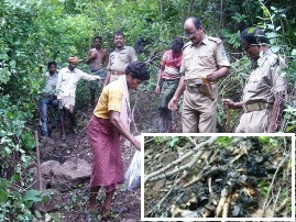 Police recovering charred remains of Nayak