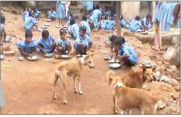 Mid day meal story 1