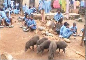 Mid day meal story 2