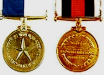 919 personnel awarded police medals | OdishaSunTimes com