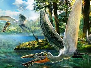 Pterosaur (source-iflscience.com)