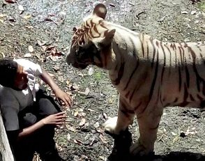 Moment before the youth was mauled to death ( source- hindustantimes.com)