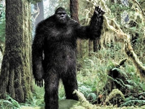 Illustration of the 'mythical' bigfoot