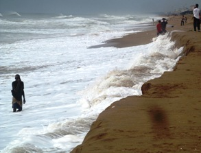 Violent waves erode Penthakata beach in Puri ( pic-Biswaranjan Mishra)