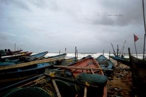 Penthakata Beach in Puri on Sunday ( pic-Biswaranjan Mishra)