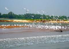 Photo Courtesy: odishatourism.org