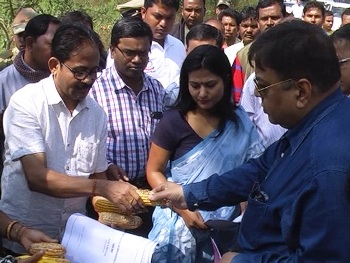 The central team assessing damage to maize crop in Gajapati district