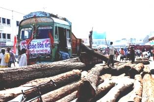 Pic: Biswaranjan