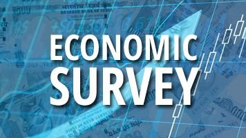 Econimic Survey Report