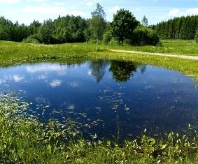 pic: www. keskkonnaamet.ee