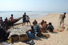 coastal livelihood