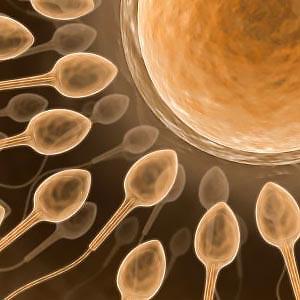 pic: www.fertility-docs.com