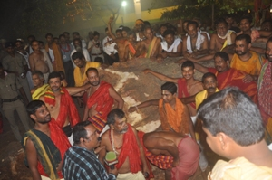 The daru identified for making of  Dev Subhadra's idol fell to the ground this evening. (Pic: Biswaranjan Mishra)