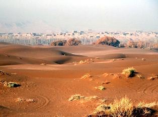 pic: natureworldnews.com