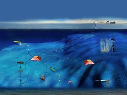 ocean observatory