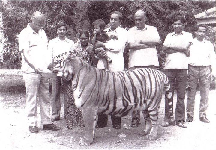 Pic: Sudeep Sunderbans Travels