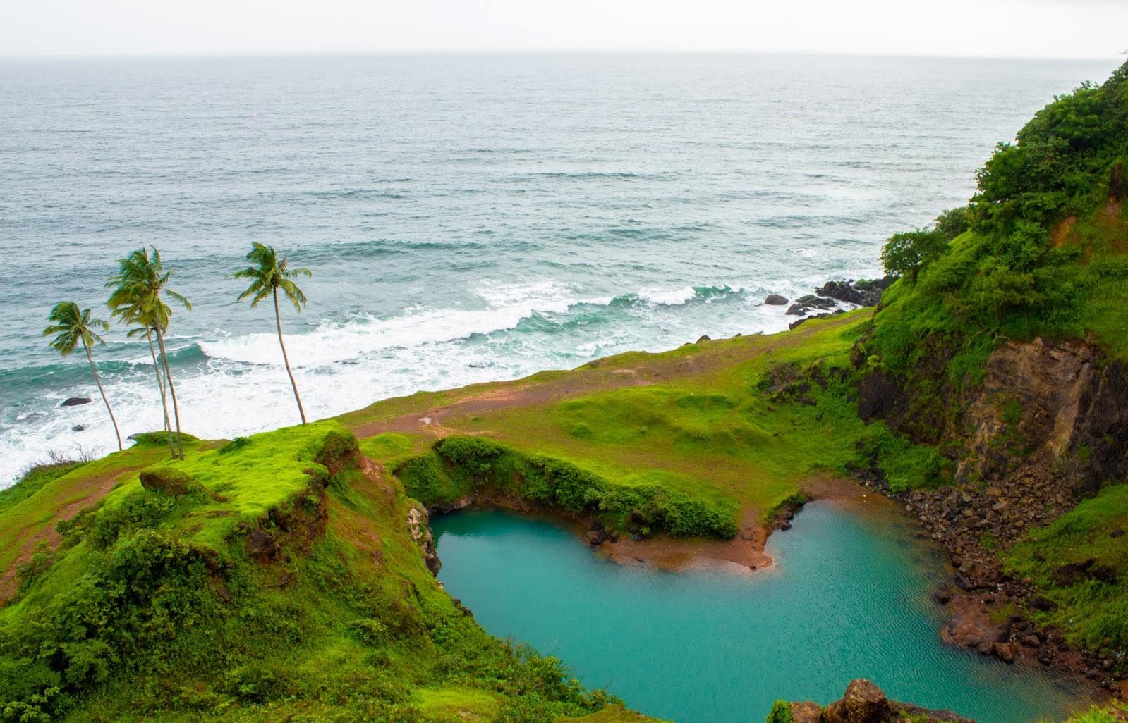 Goa Representative pic.