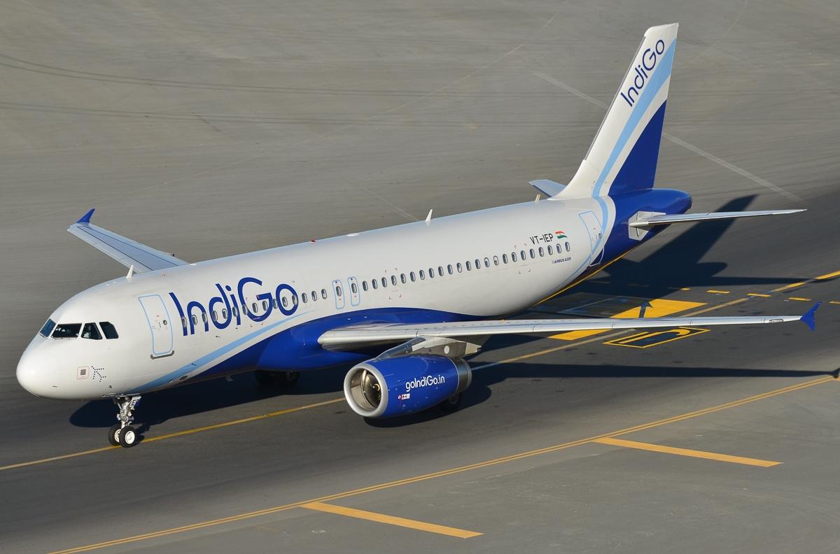 indigo airlines1
