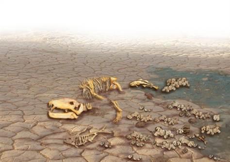 mass-extinction-540x380.grid-6x2