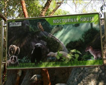 nocturnal house 1