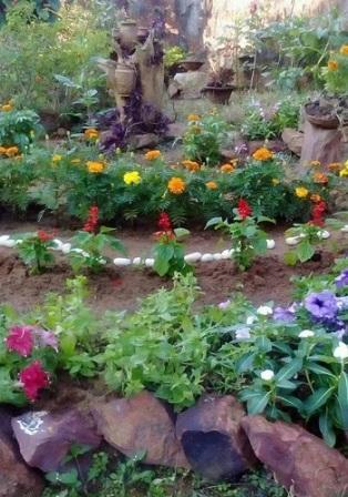 Chumki is an avid gardener too – her garden