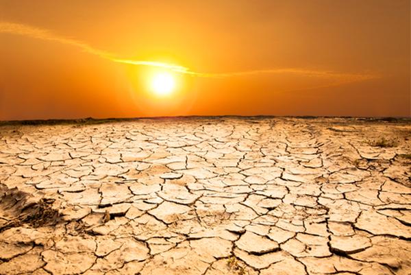 drought bright sun summer heat