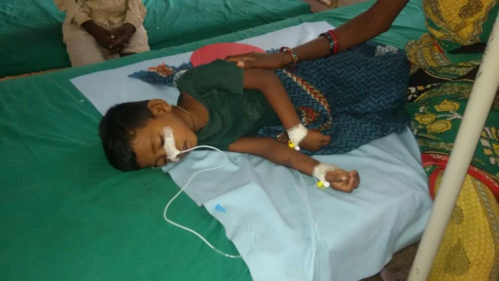 Japanese Encephalitis toll climbs to 53 in Odisha