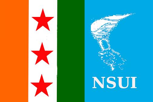 nsui-logo
