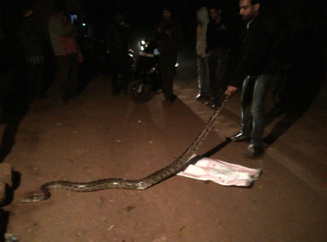 python-bhubaneswar