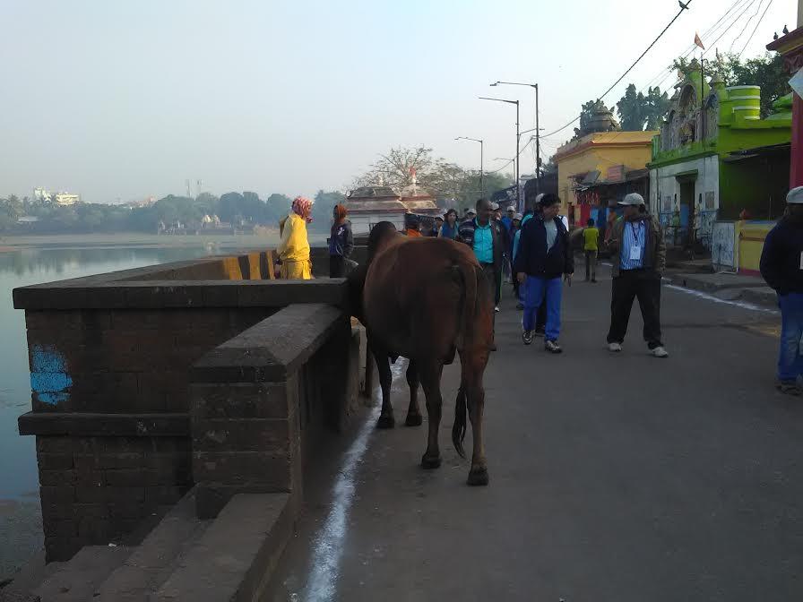 ekamra-walks