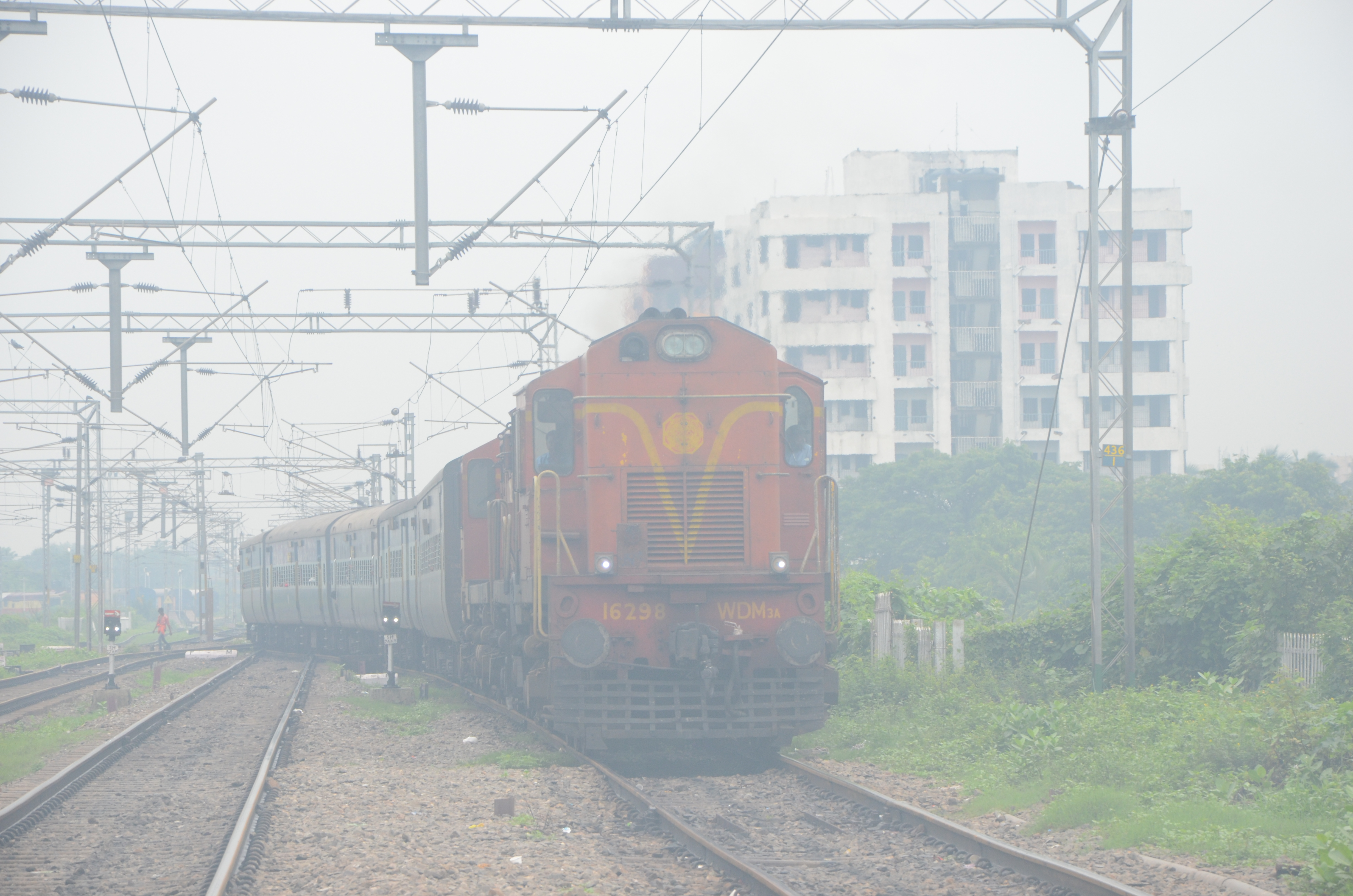 fog-train