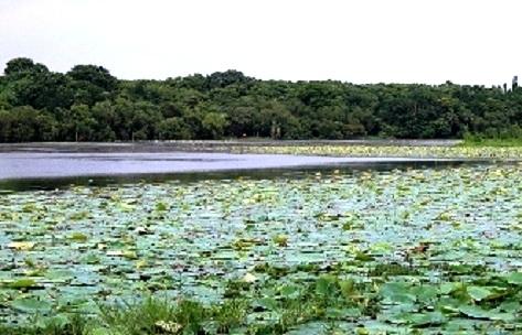 kanjia-lake