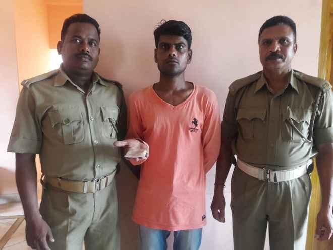 Drug peddler arrested