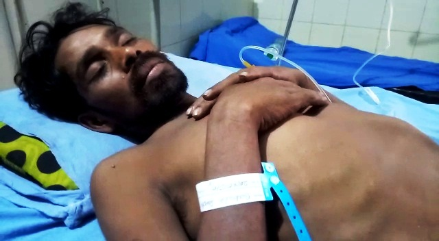 babula panda hospital