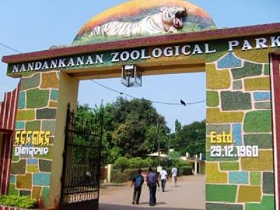 nandankanan zoo_1