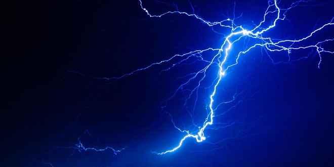tree struck by lightning