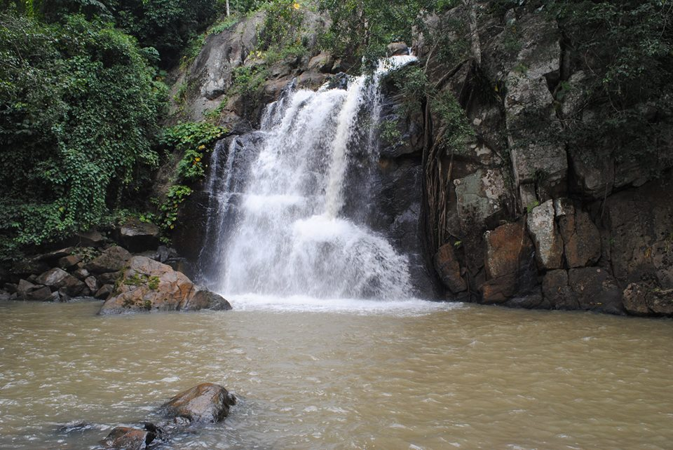 Unwind in Odisha's wilderness at these nature tourism ...