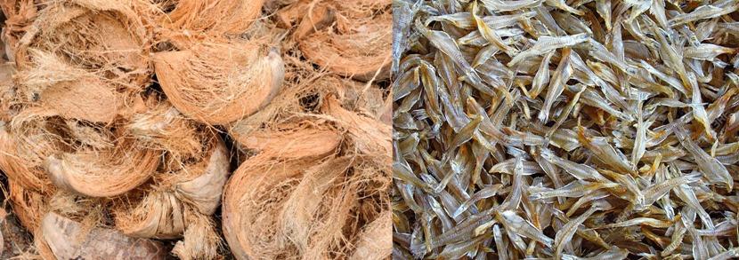 coir-dry fish