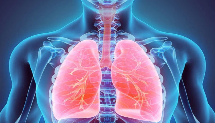 Fat-accumulation-in-lungs